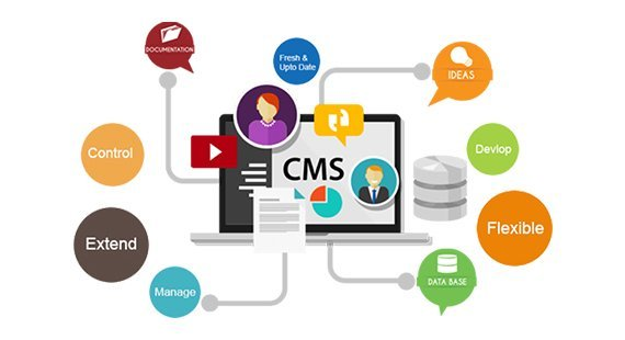 CMS web development company in San Francisco, CA