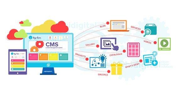 CMS web development company in San Francisco