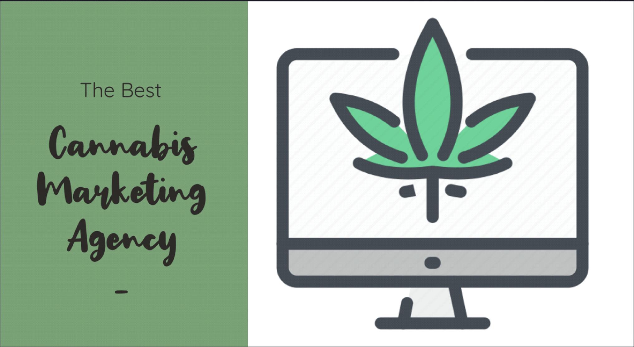 Best Cannabis Marketing Agency